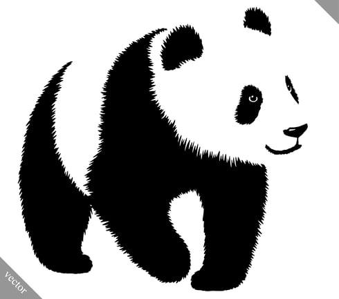 Actualizacion de google panda y el SEO