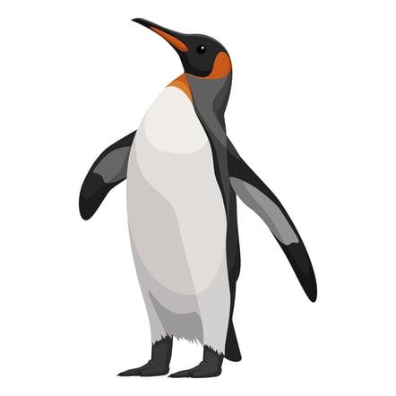 Google Pinguino y el SEO