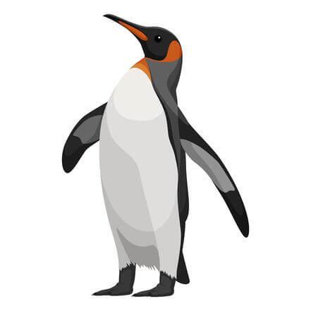 Pinguino de Google SEO
