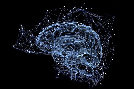 cerebro google
