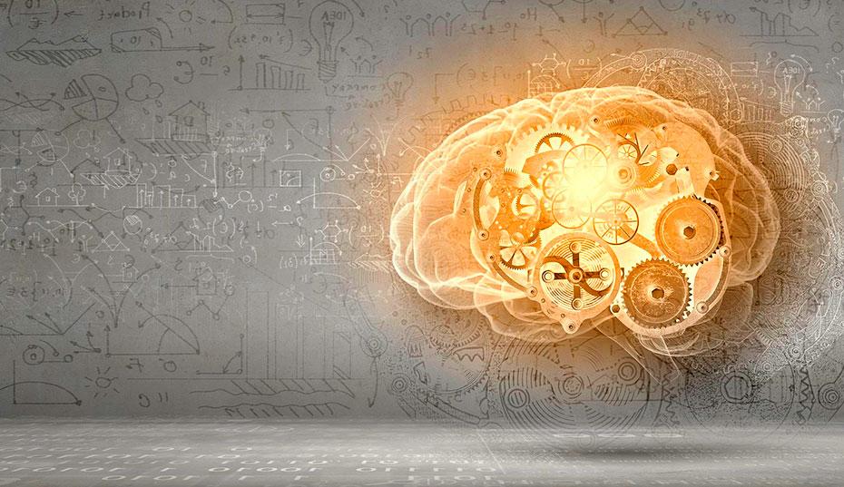 Aplicando Neuroventas en su Negocio